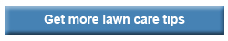 Get more lawn care tips